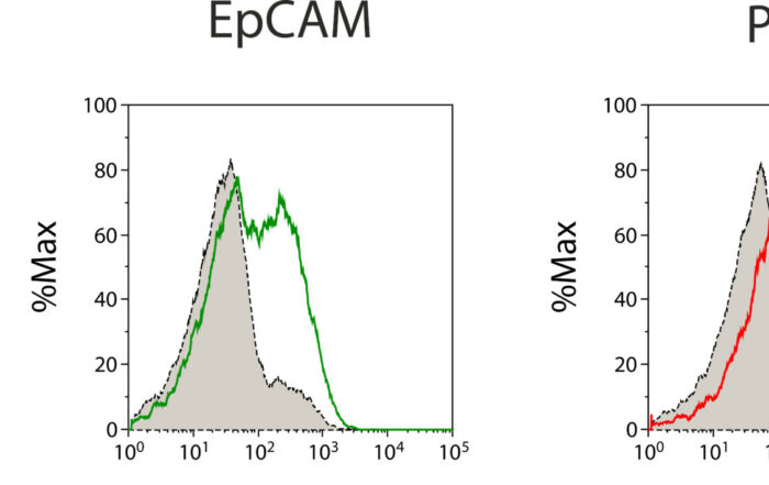 News NTRC FACS Primary Material PD L1 EpCAM CA125 Scaled