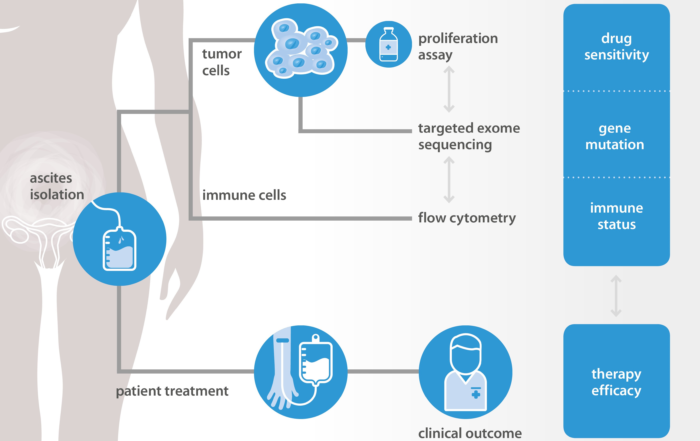 graphic NTRC and Radboud explore new methods to predict chemotherapy response in ovarian cancer