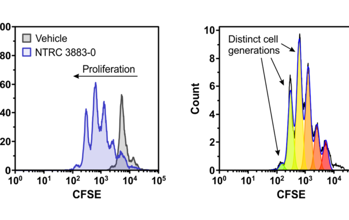 Featured image co-culture assay for paper Grobben et al (2021) Frontiers in Immunology