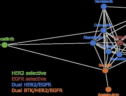 Comparative analysis of drug response and gene profiling of HER2-targeted tyrosine kinase inhibitors